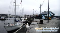 Gipsy Moth IV moored next to Cap'n Jaspers