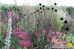 Prairie mengsel Copper (per 5 m2)