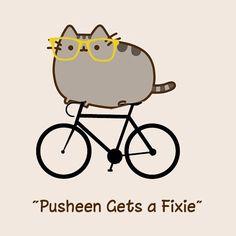 Pusheen gets a fixie