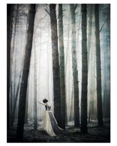 (Photoshoot Concept) Lady of the Forest