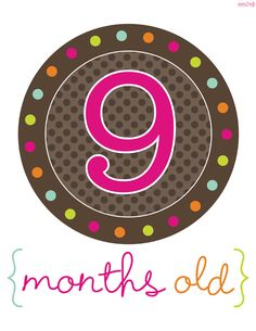 Free Printable Month Signs for pictures of the new little one!