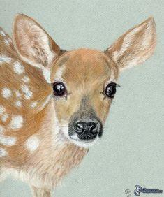 Deer drawing Source by lukenshadow Animal Paintings, Animal Drawings, Art Drawings, Deer Paintings, Deer Drawing, Painting & Drawing, Drawing Drawing, Watercolor Animals, Watercolor Paintings