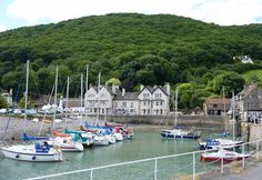 On the second day of my walk along England's South West Coast Path I passed through Porlock and down to Porlock Weir (see photo). South West Coast Path, I Passed, See Photo, Paths, England, Pathways, England Uk, English, British