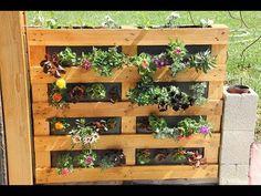 Mur-végétal-palette-Sphaigne - 30.04.15 - YouTube