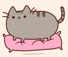 apparently his name is Pusheen, but i call him Sprinkles:)