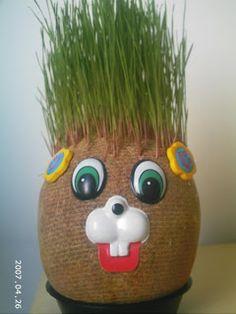 Podniosłem w internecie ...: trawa Centrali