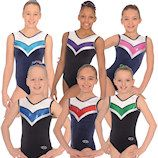 The Zone Harmony Gymnastics Leotard new for Spring 2014 collection