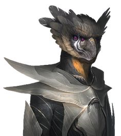 Avian_normal_10.png (310×350)