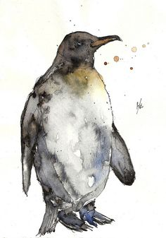 and also this penguin