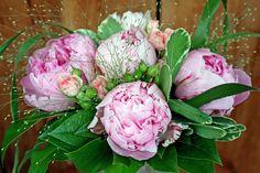 Juni, Vegetables, Rose, Flowers, Plants, Wedding, Valentines Day Weddings, Pink, Vegetable Recipes