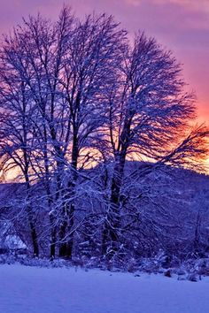 sunset in the winter <3