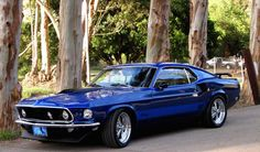 Electric blue 1969 Ford Mustang Mach 1 Fastback,