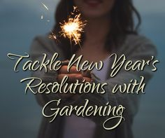 Somervell County Master Gardener Association Newsletter: Tackle New Year's Resolutions with Gardening