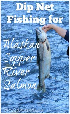Dip Net Fishing for Alaskan Copper River Salmon - IdlewildAlaska