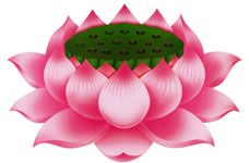 "Lotus Symbolism | I've always thought the lotus was beautiful, but didn't know what it ""meant""..."