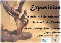 O Ateneo de Ourense acolle durante os días 16 a 31 de xaneiro a exposición titulada Máis alá do raizame.     A mostra está formada por unha selección de obras de Domingo Ribao Docampo.