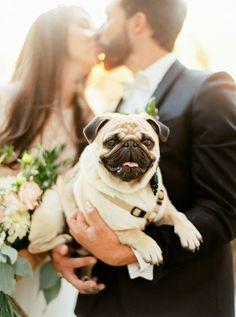 Bride, groom and pug: http://www.stylemepretty.com/2016/04/13/a-portugal-wedding-straight-from-a-fairytale/ | Photography: Brancoprata - http://brancoprata.com/