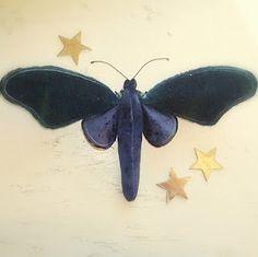Blue Velvet moth from mister finch