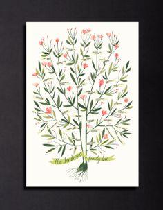 Azalea Family Tree