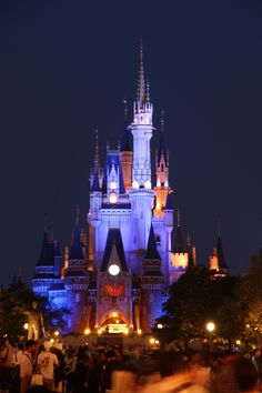 disneyland tokyo. It's my goal in life to go to all four disneylands<3