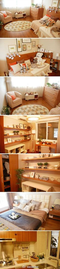 1000 Images About Home Plant On Pinterest Studio Apartment Floor