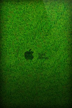 Grass Wallpaper for iPhone 5 - Bluespeaker   iPhone壁紙ギャラリー