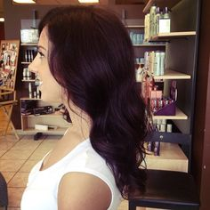 Dark violet hair for fall!!!!  Amanda Clemmer  Amato Hair Design Tinley park IL (708)429-1787