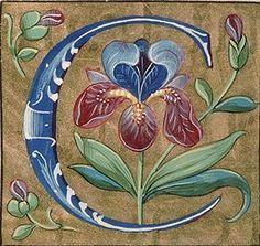Missel Langue latin Nomenclature Liturgie Datation avant 1585 Avignon, BM, 0146