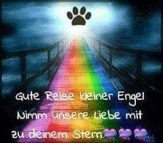 Regenbogenbrücke - New Ideas Pet Loss Grief, Rock Painting Ideas Easy, Memorial Tattoos, Shetland Sheepdog, Woodland Party, Rainbow Bridge, Animal Tattoos, Animals And Pets, Cute Cats