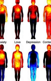 THIS is what your emotions actually look like.