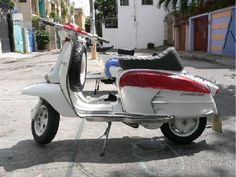 Things you didn't know about me...My first love was my minibike of which my favorite poodle dog would ride on the back of as we cruised around the ranch getting into trouble. That was a special dog...Would love to have a Vespa one day...and look at that spare tire!!