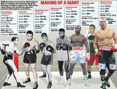 The late world heavyweight champion Jack Johnson, the 'Galveston Giant' was shorter than the man who dethroned him in Havana, Cuba, Jess Willard. The Klitschkos, Lennox Lewis, Nikolai Valuev, Primo Carnera, and Mike White are some historical examples of the tall guys who rock and rolled in the heavyweight division, not always with success.