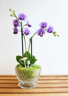 Faux Mini Purple Moth Orchid Flower Arrangement in Vintage Crystal Candy Dish by MissMossGifts