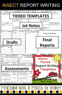 """Report writing can be challenging for students. Use these """"insect"""" tiered report writing templates with your students as they work through the report writing process.  The """"Insect Report Writing"""" package is aligned with the common core and supports students as they write an insect report."""