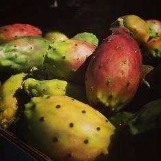 Prickly Pear Fruit/ Fico d'India at Parco dell'Etna #fruit #garden #sicily #italy #travel #park #food