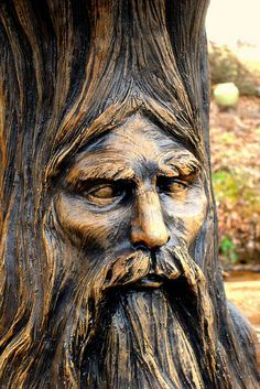 Old Man of the Oak Close by Peach Blossom Hill Wood Carving Faces, Tree Carving, Wood Carving Art, Wood Sculpture, Sculptures, Tree People, Tree Faces, Tree Trunks, Wooden Art