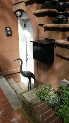 Mailbox mounted aside door... would need to measure vs garbage can shed