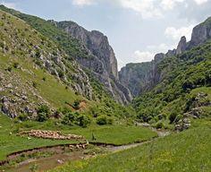 Cheile Turzii: incursiune în inima naturală a României