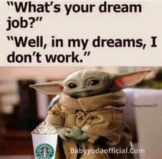 Work Humor, Dream Job, Dreaming Of You, Owl, Geek Stuff, Teddy Bear, Bird, Memes, Cute