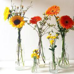 Arranjos solares como o dia. A partir de R$10  #oitominhocas #arranjofloral #floweroftheday #flores #decoração #maiscor #calor #ecofriendly