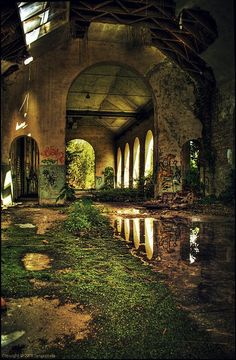 Beautiful But Scary Abandoned Buildings In The World - vintagetopia Abandoned Buildings, Abandoned Mansions, Abandoned Places, Abandoned Castles, Haunted Places, Abandoned Library, Derelict Places, Old Buildings, Beautiful Ruins