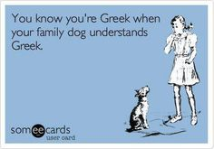 Growing up Greek American yes Alex has taught Maggie Greek! Greek Memes, Funny Greek, Greek Girl, Greek Easter, Greek Culture, Funny Relatable Quotes, Do Homework, Thug Life, Family Dogs