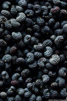 Black   黒   Kuro   Nero   Noir   Preto   Ebony   Sable   Onyx   Charcoal   Obsidian   Jet   Raven   Color   Texture   Pattern   Poppy #seeds.