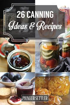 26 Canning Ideas and Recipes | How To Preserve Fruits and Vegetables, Homesteading Ideas For Beginners by Pioneer Settler at  http://pioneersettler.com/26-canning-ideas-recipes/
