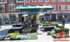 Visit Kristiansand | Information on kristiansand Norway | Tourism Information on Kristiansand Norway | Kristiansand Accommodation