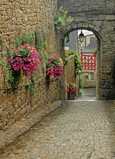 Village Lane in Brittany, north of France,  Just luv the design of this!!! plus to me this is art!!!!   :)