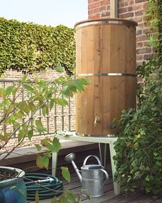 Collect rain water. #conservation #sustainable