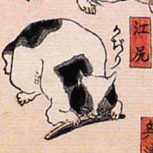 江尻 猫飼好五十三疋(歌川国芳の画)