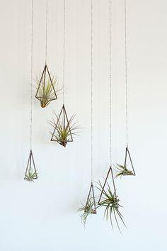 hanging air planters built by hand: kkdw. / sfgirlbybay