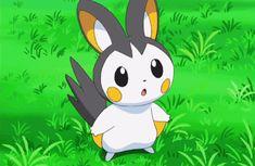 Emolga's reaction to 46 people loving on her Pokemon Emolga, Pokemon Jigglypuff, Pokemon Gif, Cute Pokemon, Pokemon Cakes, Pokemon Original, Pokemon Photo, Pokemon Ash And Serena, Manga Anime